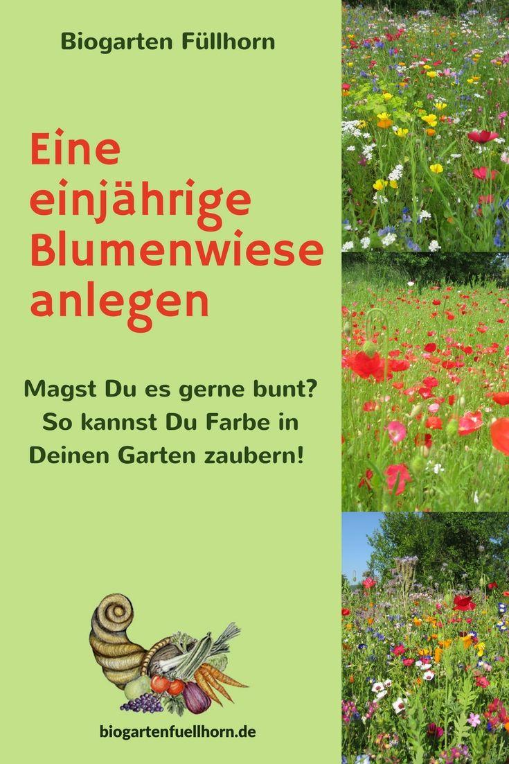 Eine Einjährige Blumenwiese Entsteht | Pinterest | Garten Anlegen, Bunte  Blumen Und Blumenwiese