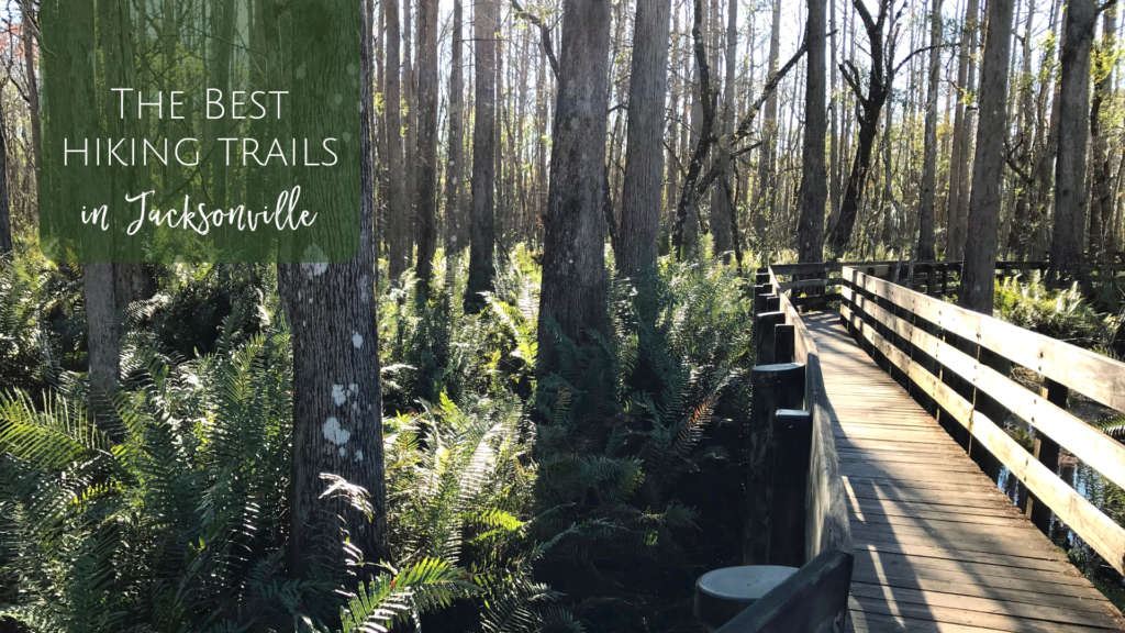 The Best Hiking Trails in Jacksonville #hikingtrails
