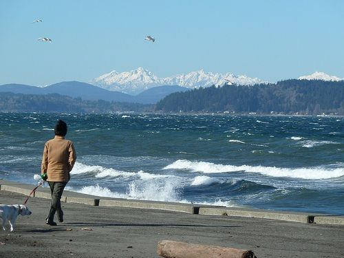 Alki Beach On A Chilly Day In The Winter Seattle Beautiful