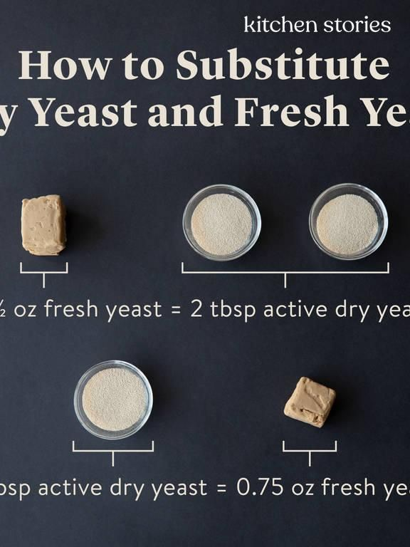 Definition Yeast What Fresh