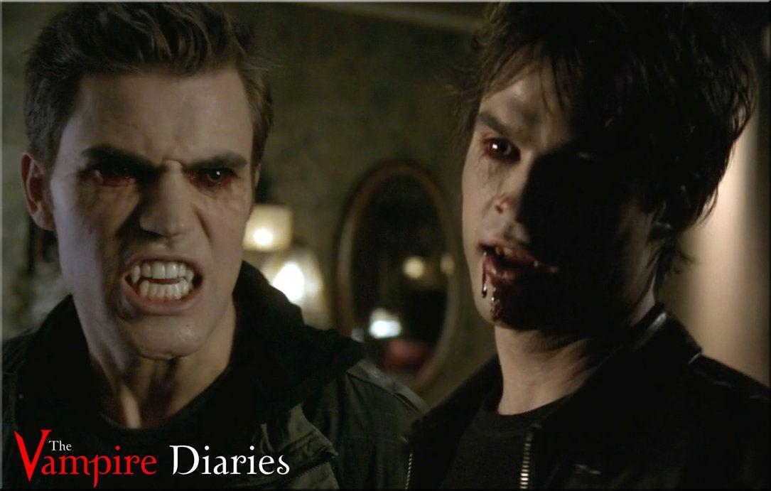 vampire salavorte brothers the vampire diaries stefan salvatore