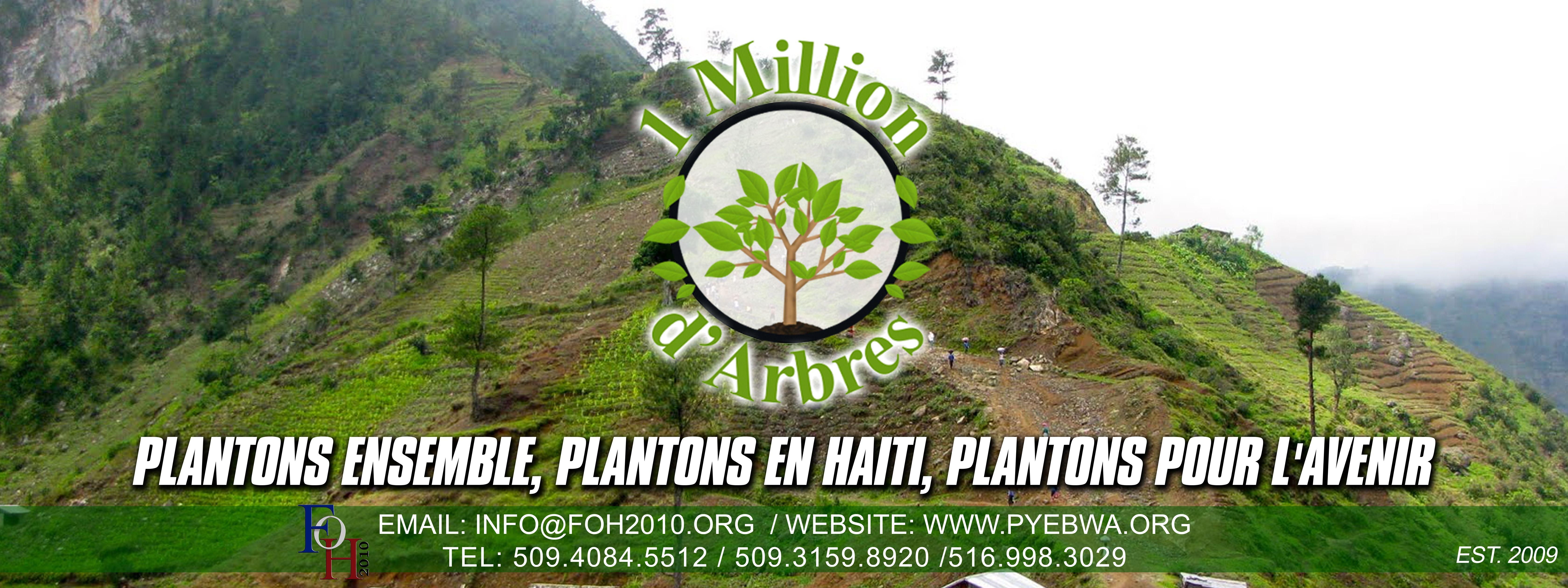 Haiti Image By Magalie Theodore On Haiti Reforestation