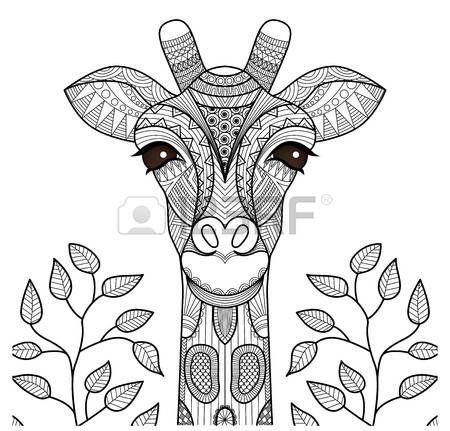 Juegos De Animales Del Desierto Para Colorear Imprimir Y Pintar