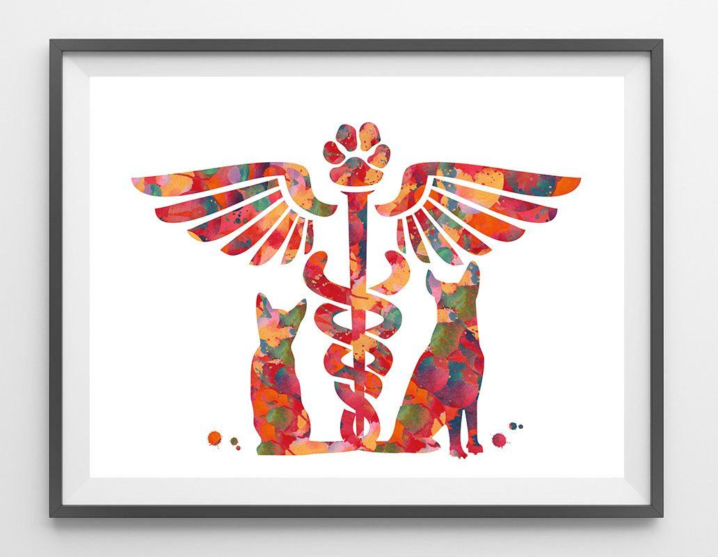 Veterinary Clinic Symbol Watercolor Print Veterinary