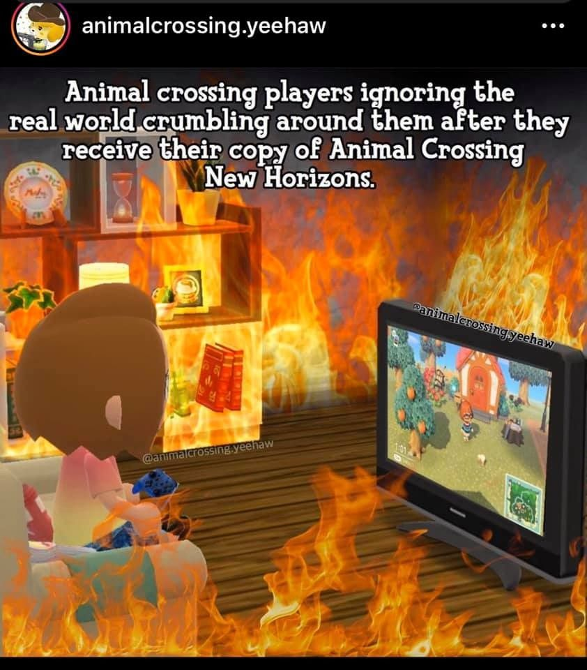 Animal Crossing Memes To Fuel Your Obsession Animal Crossing Memes Animal Crossing Funny Animal Crossing
