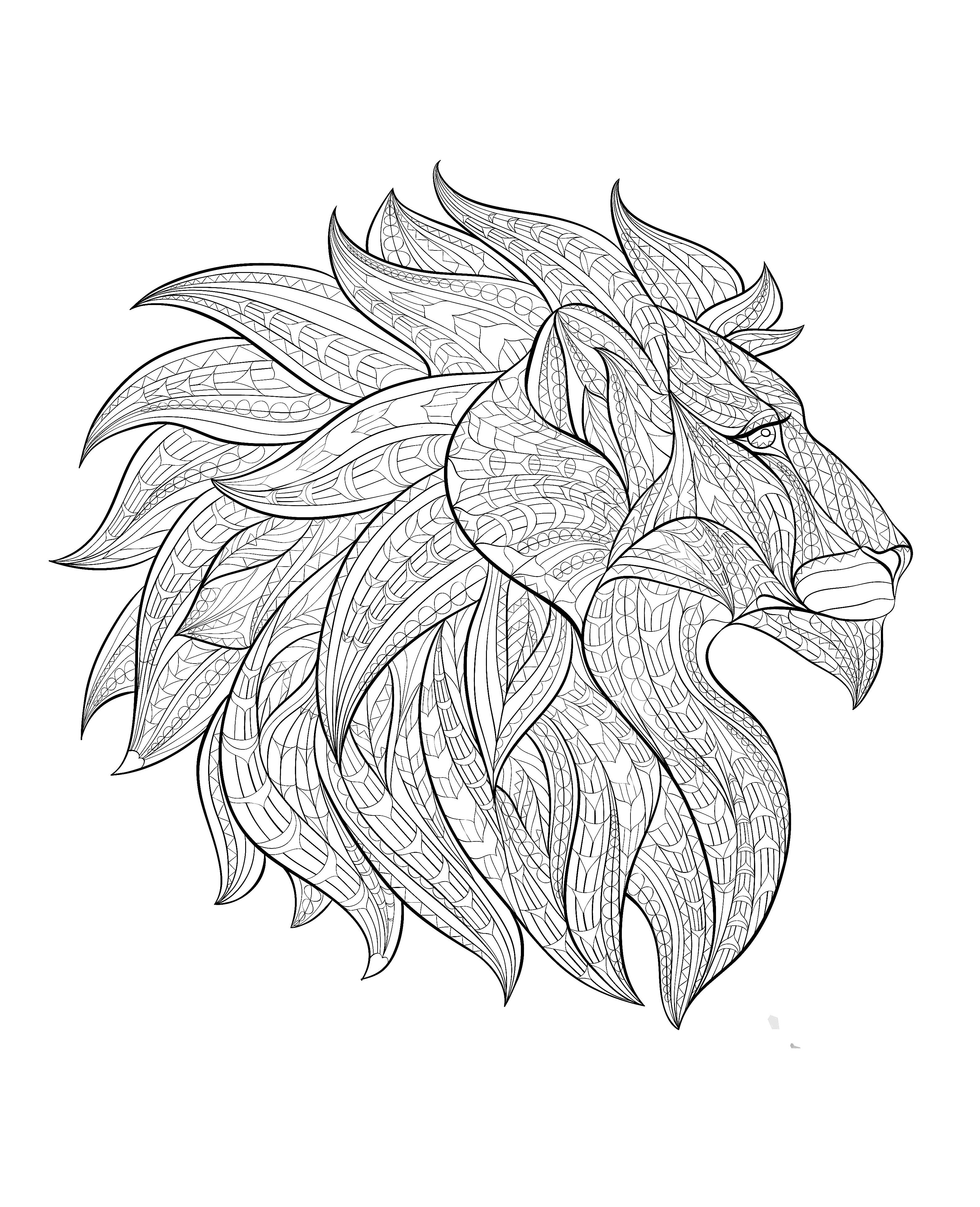 Free Coloring Page Coloring Adult Africa Lion Head Profile Lion