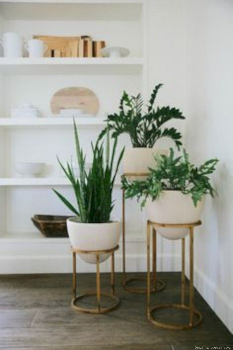 Stunning Indoor Plants Ideas For Your Living Room And Bedroom 02 Diy Plant Stand Plant Decor Plant Stand