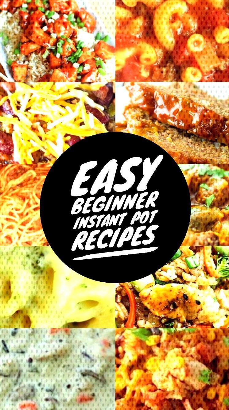 Easy Beginner Instant Pot Recipes   Decor Dolphin