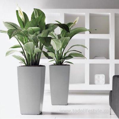 Maceta para plantas grandes casa pinterest macetas for Casas decoradas con plantas naturales