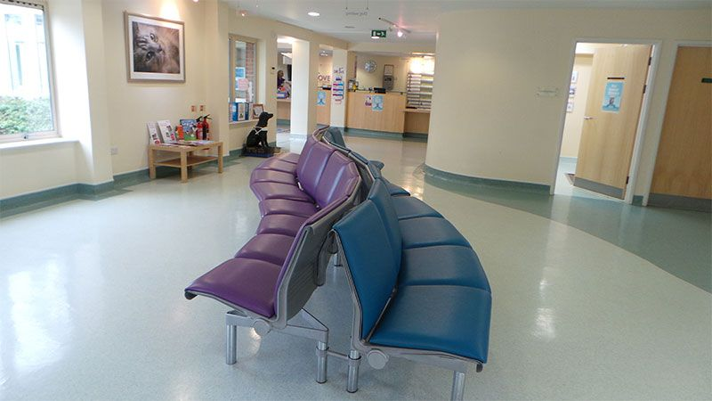 Waiting Room Drove Vets Drove Veterinary Hospital With Images