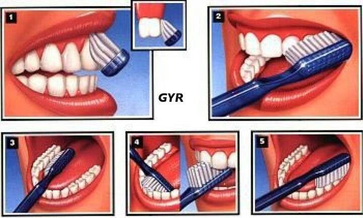 Manera correcta. De cepillarse los dientes