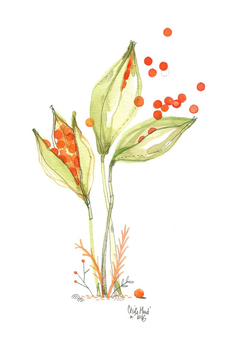 iris, Cécile Hudrisier | Pintura | Pinterest | Acuarela, Dibujo y ...