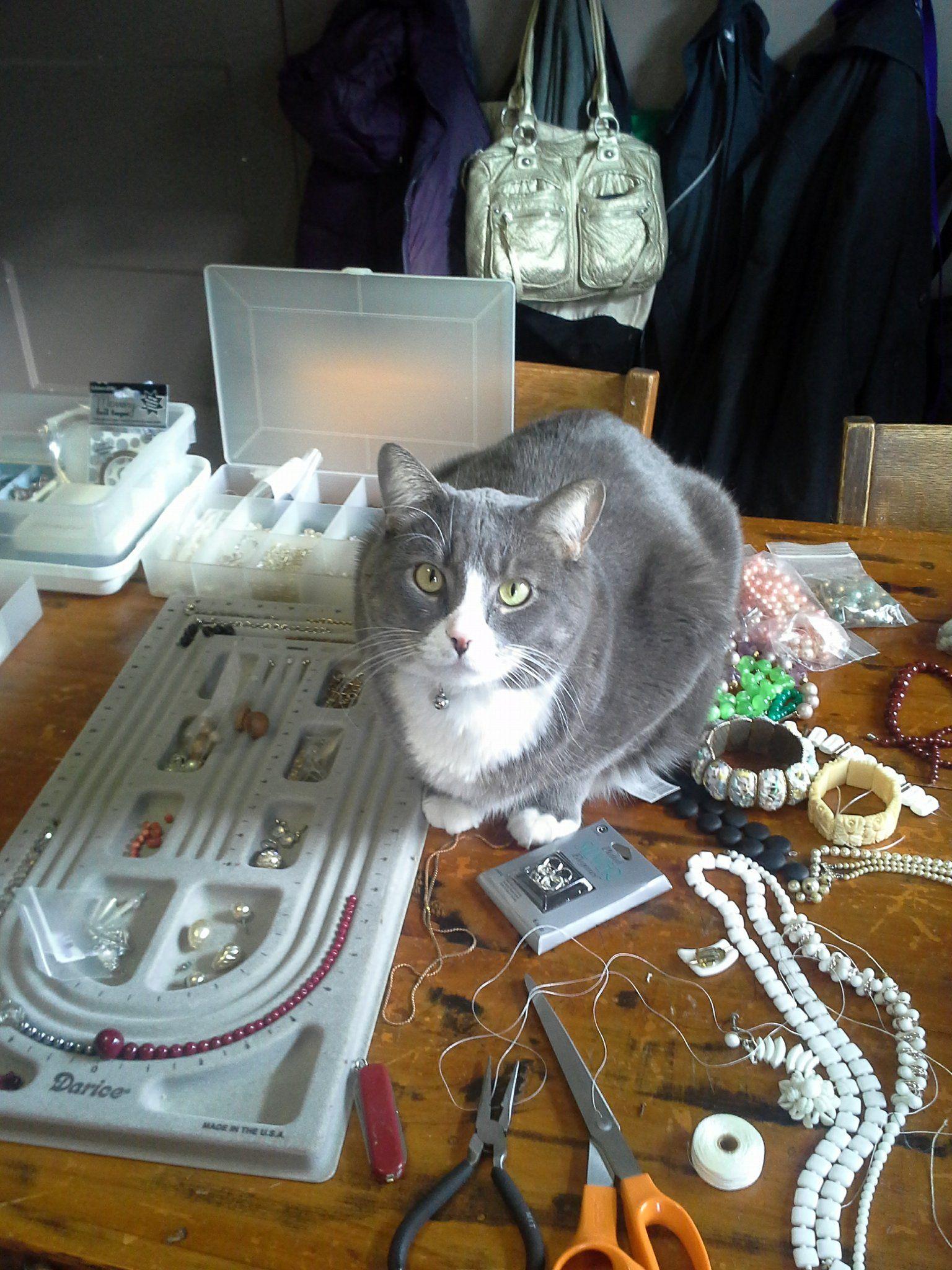 Phloyd boy helping me bead!