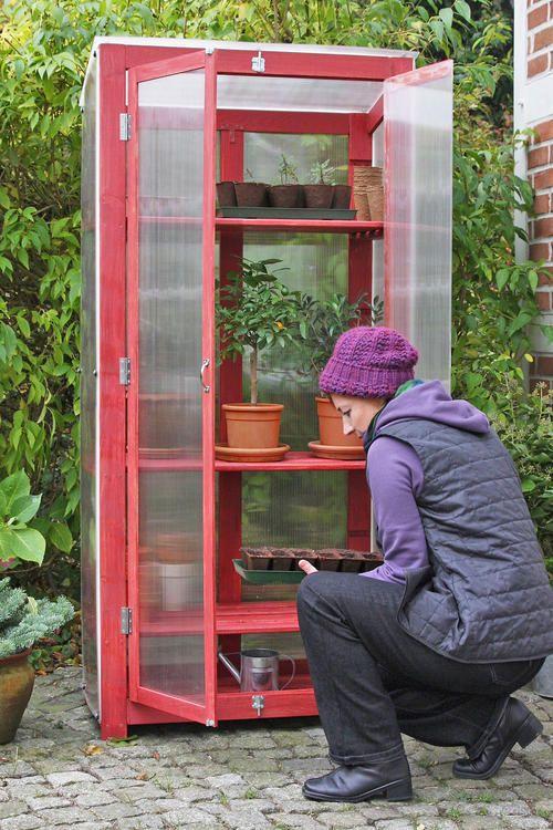 baumarktregal als gew chshausschrank pinterest holzregal k belpflanzen und zum beispiel. Black Bedroom Furniture Sets. Home Design Ideas