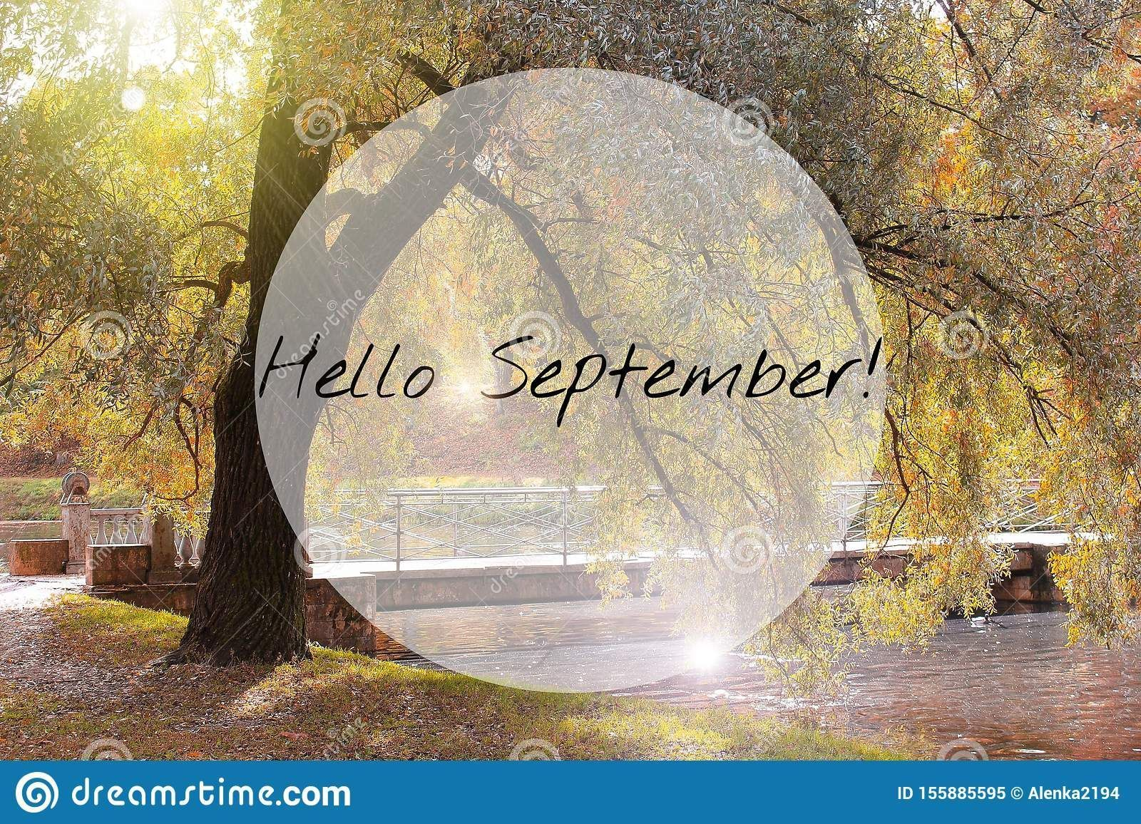 Photo about Hello September banner. New month. Greeting card. Golden autumn. The text in the photo. Seasons. Trees in the park. City Park. Autumn Park. Image of banner, outdoor, autumn - 155885595 #helloseptember Photo about Hello September banner. New month. Greeting card. Golden autumn. The text in the photo. Seasons. Trees in the park. City Park. Autumn Park. Image of banner, outdoor, autumn - 155885595 #helloseptember Photo about Hello September banner. New month. Greeting card. Golden autum #helloseptember