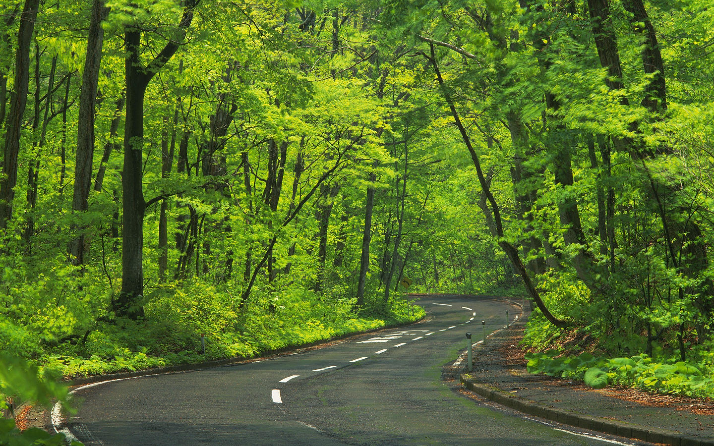 صور ومناظر حلوه الطبيعة الخلابة وجمالها الرائع صور حلوه Country Roads Image Road