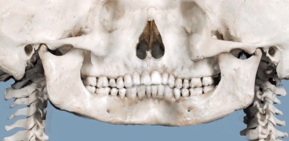 RADIOGRAFÍA PANORÁMICA: Sus aplicaciones en Odontología - Dr. Hugo Aguayo