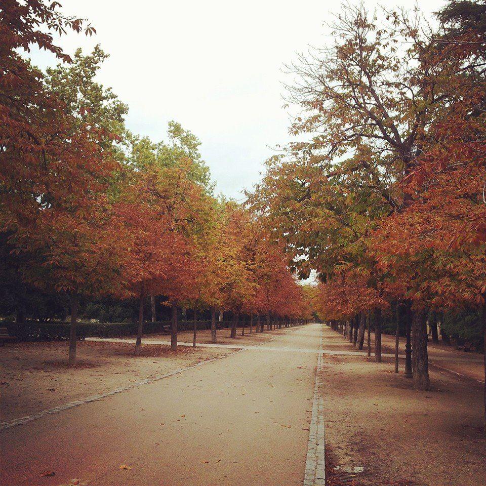 Parque El Retiro #Madrid #Otoño