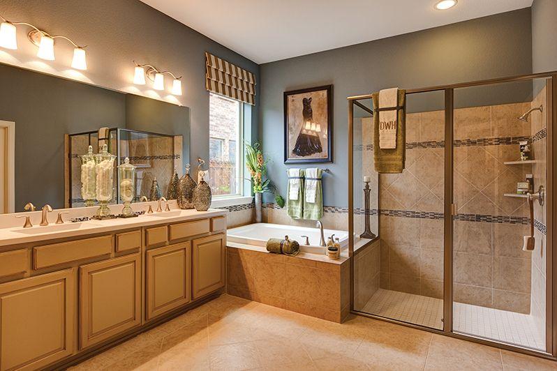 Model Home Bathroom david weekley homes - delaney (showcase home) master bathroom