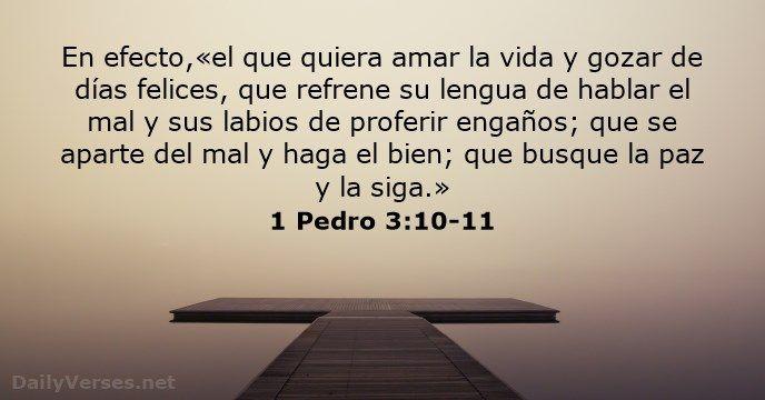 1 Pedro 3 10 11 Frases Espirituales Te Amo Mi Vida Versículos De La Biblia