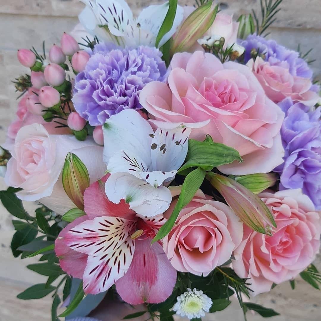 Cvety Samye Prekrasnye Nezhnye I Krasivye Rasteniya Na Nashej Planete Plants Bouquet