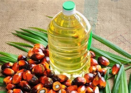 Global Palm Oil Market Spurred by Expanding Applications in Food - sample report