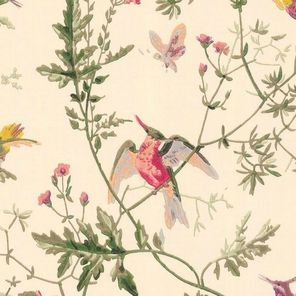 Papier peint hummingbirds hummingbird and walls - Papier peint oiseaux ...