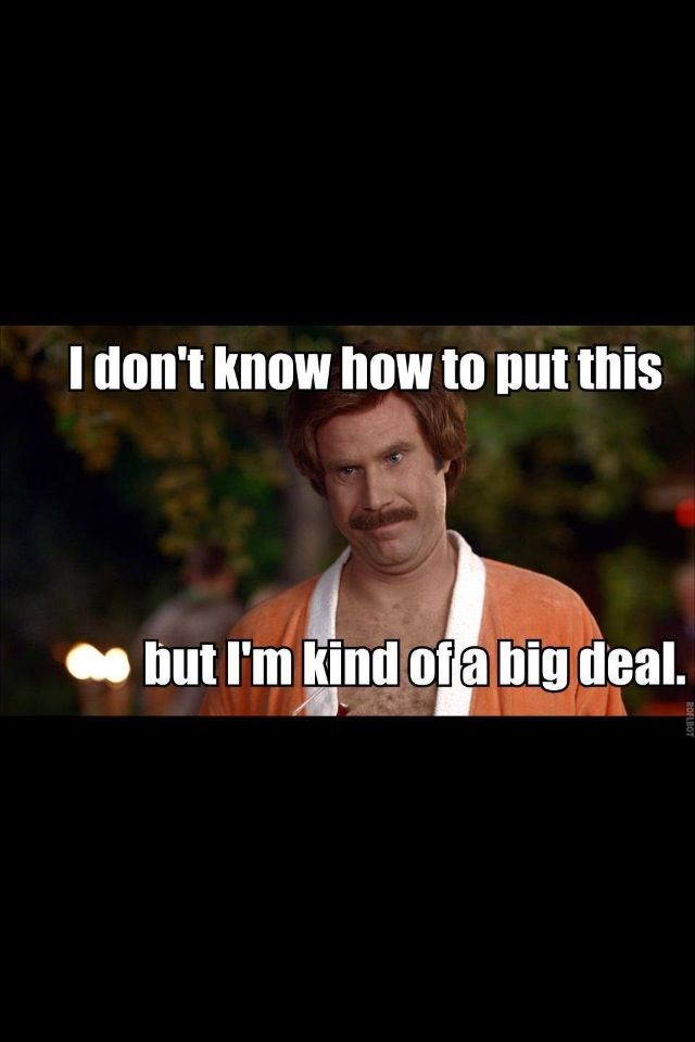 Im Kinda A Big Deal Gif : kinda, Chrissy, Nadeau, Funny, Movie, Quotes, Funny,, Quotes,