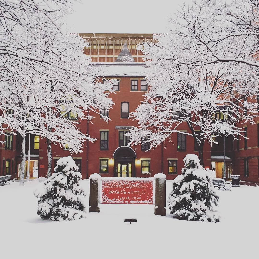 Sustainability Bu On Instagram We Had An Unexpected Snow Storm Blanket Our Two Campuses In Boston Here S A View From The Bostonu Instagram Snow Storm Snow