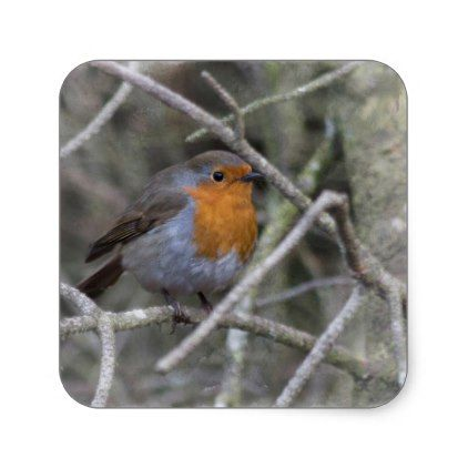 little red robin square sticker xmas christmaseve christmas eve christmas merry xmas family kids gifts - Is Red Robin Open On Christmas