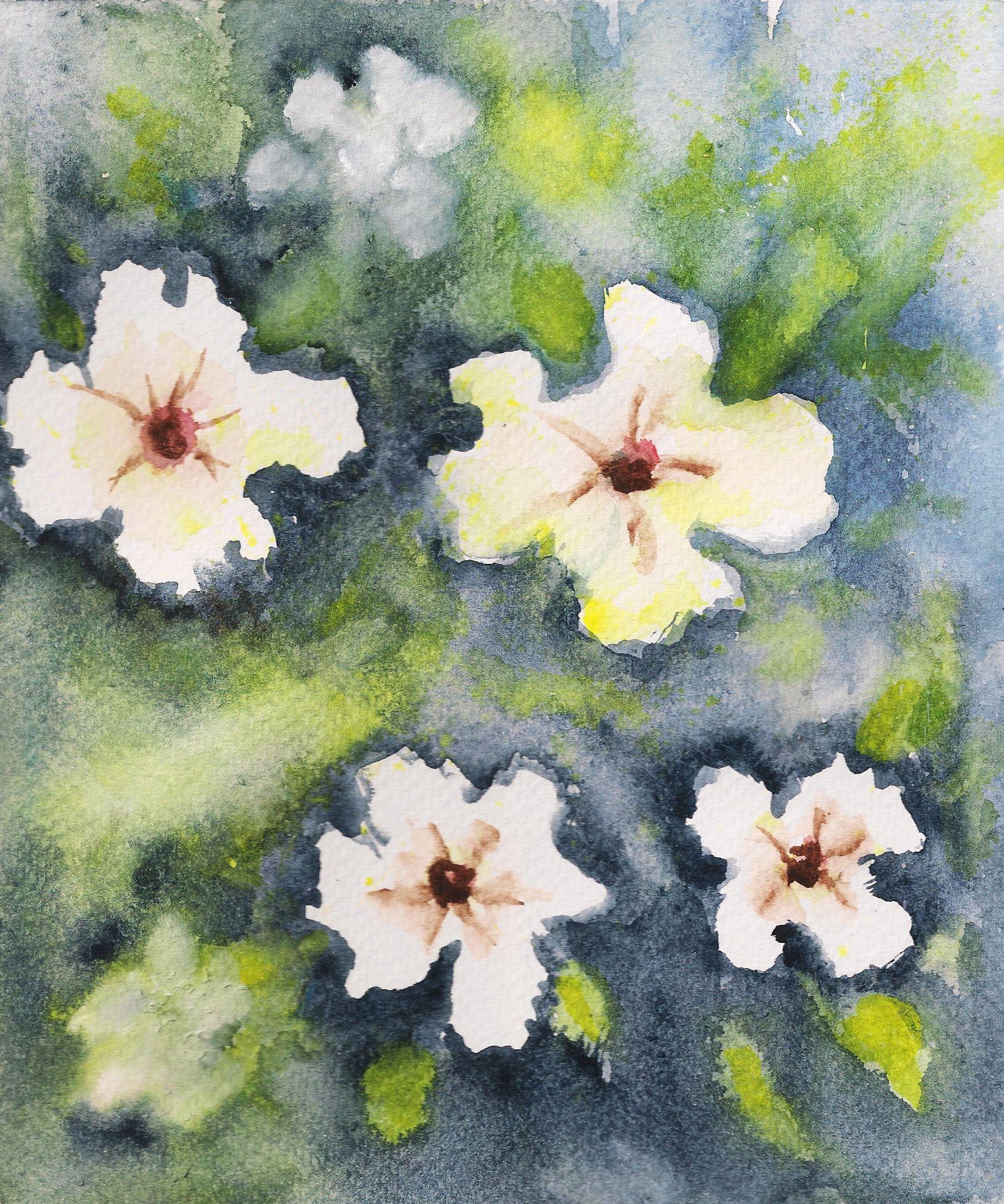 Fiori Bianchi 3.Fiori Bianchi Watercolor By Mcdea 3 Art My Watercolor Nel 2019