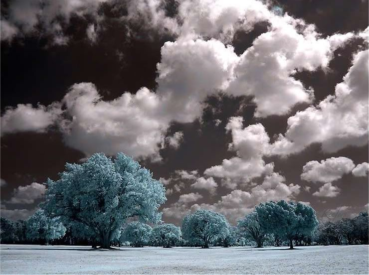 Color splash art landscape art nature color splash photography keefers
