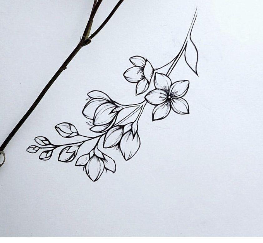 Flower Sketch Flower Sketches Flower Drawing Inspirational Tattoos