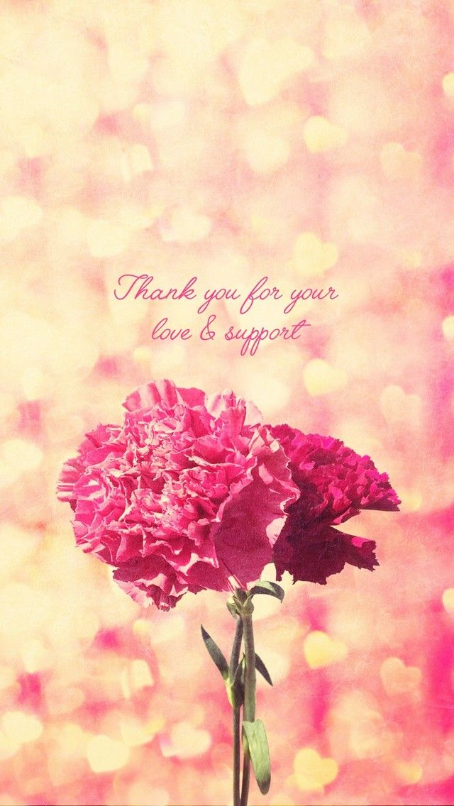 Carnation Love Happy Mothers Day Love Wallpaper You Re Awesome