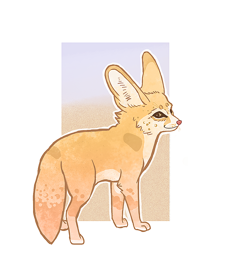 Fennec Foxes Are The Best Kitsune Fox Art Reference Photos Fox