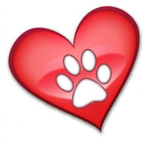 Paws touch your heart and never leave...
