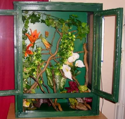 New Homemade Crested Gecko Cage!