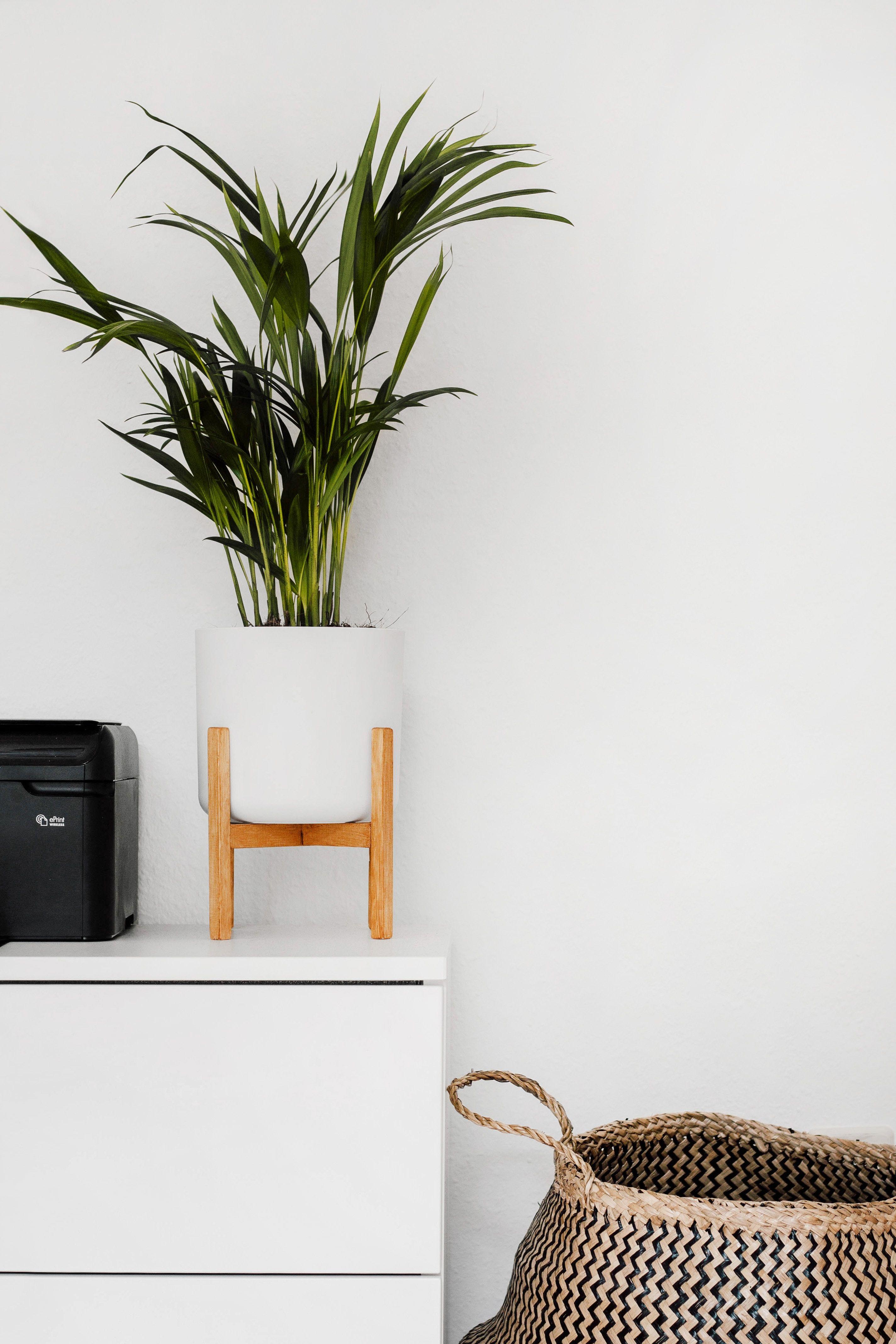simplicité et élégance pour ce joli cache pot bois et blanc et sa