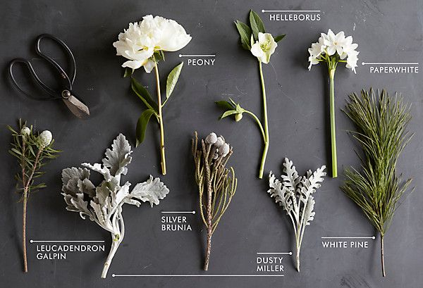 Pin By Janice Camp On Flowers Winter Floral Arrangements Winter Flowers White Flower Arrangements