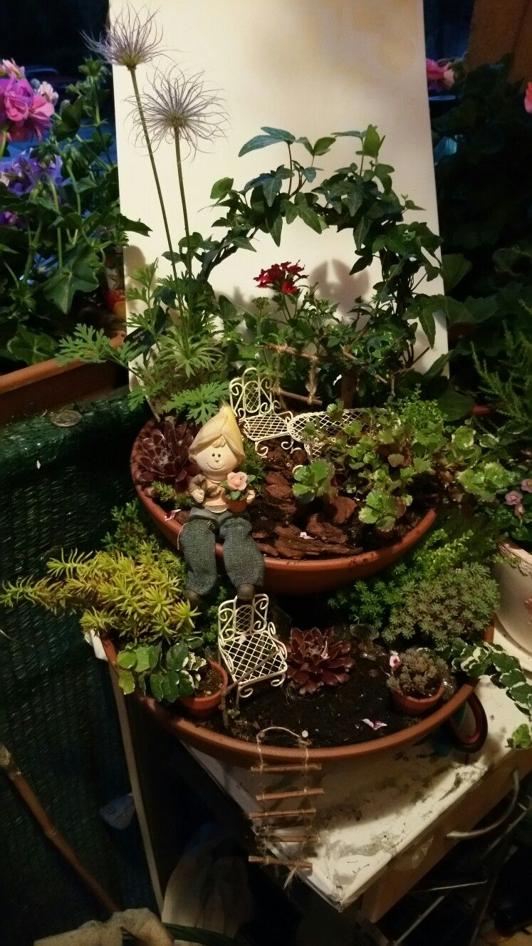 My mini garden | Mini kertek | Pinterest | Gardens