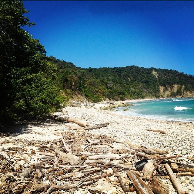 #tbt to possibly the most glorious beach ever. #caboblanco reserve at the southern most tip of #PeninsuladeNicoya in #costarica🇨🇷. Only accessible with a 2 hour jungle trek. ---------------------------------- #costarica #montezuma #jungle #beach #sunshine #pacificbeach #pacific #forest #rainforest #beaches #beachview #beachvibes #travel #travelphotography #tropical #tropicaladventure #trekking @greeno_84 #yourewelcome #pacificbeachlocals #sandiegoconnection #sdlocals #sandiegolocals…