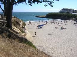 Sunny Cove Beach Santa Cruz