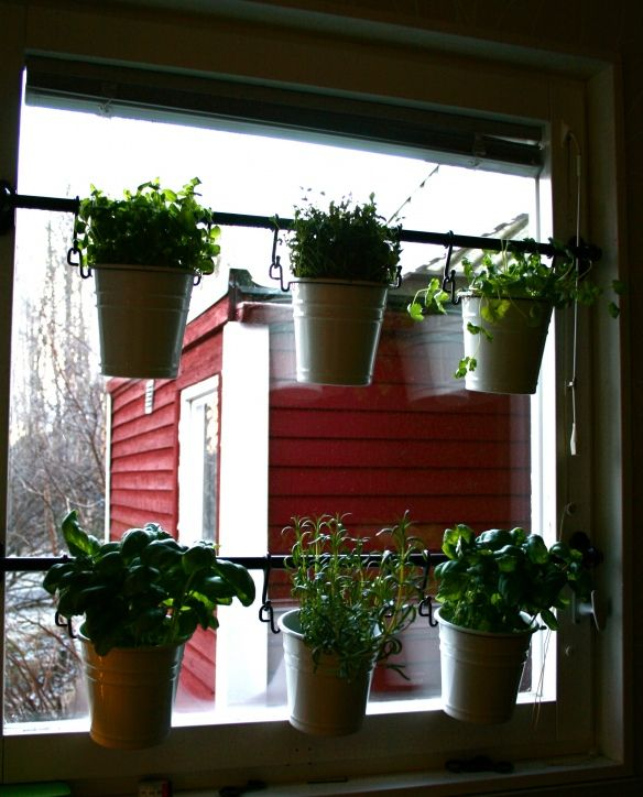 Kitchen Window Herb Planter: Herbs In The Kitchen Window~ This Could