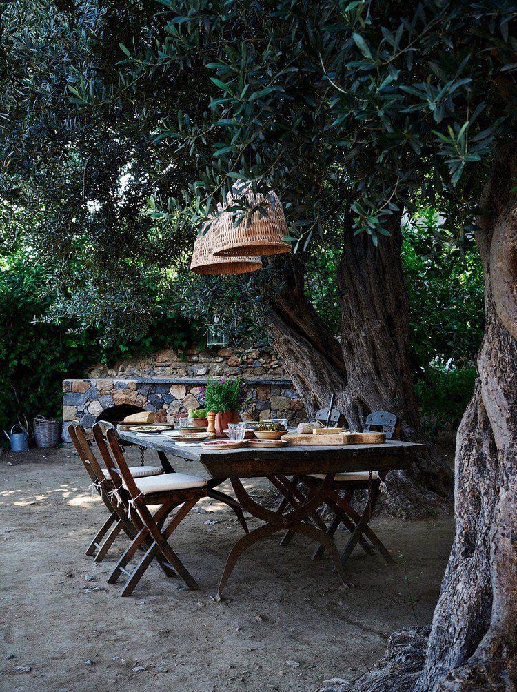 Plantes et aménagement jardin méditerranéen – 79 idées   Gardens ...