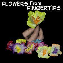 Flowers from Fingertip - Silk