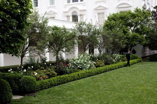 Formal Rose Garden Plant List White House