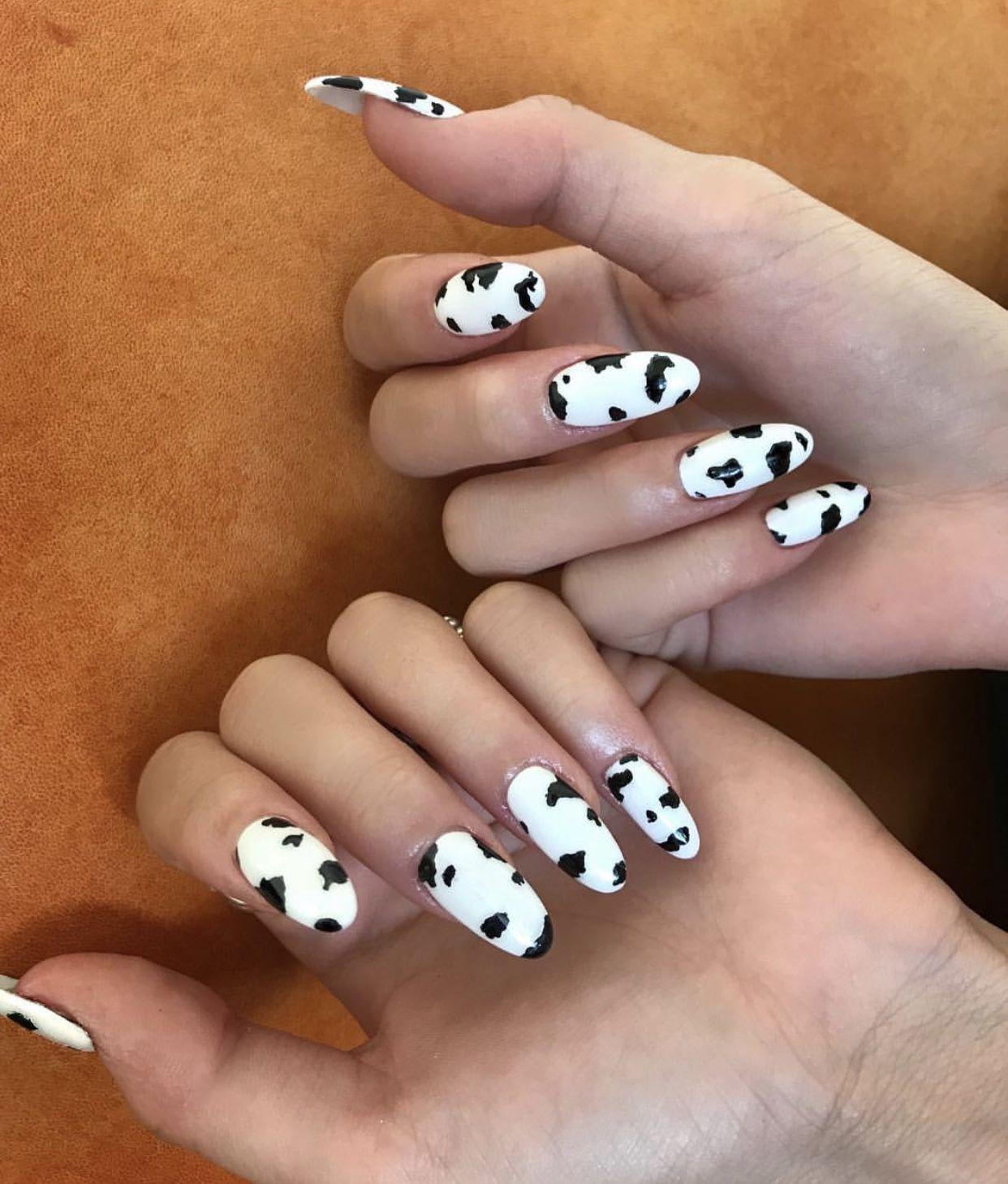 Cow Print Oval Almond Shaped Acrylic Nails Nailideas Cow Nails Oval Acrylic Nails Almond Acrylic Nails