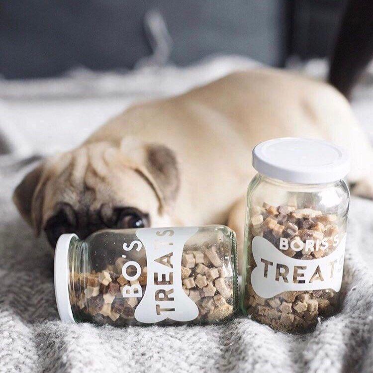 This Pug Loves Our Pet Treat Jars Dog Treat Jar Pet Treats