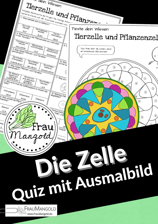 Tier Und Pflanzenzelle Quiz Mit Ausmalbild Mandala Zellen Ausmalbild Pflanzenzelle