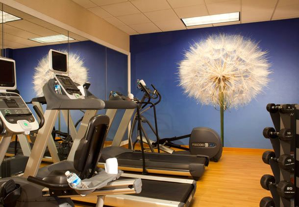 Springhill Suites Atlanta Buford Mall Of Georgia Muscle Building Tips Weight Training Effective Workout Routines